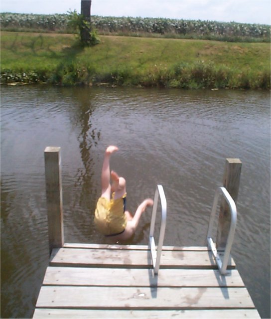Pond maintenance algae control for Large pond maintenance